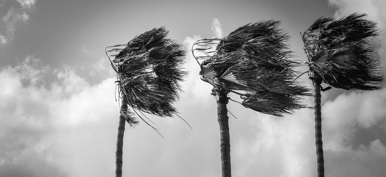 Understanding Antenna Wind Load